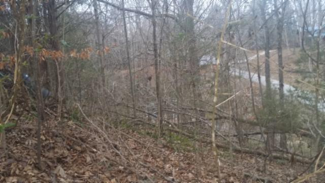 0 .95 Acres E Port Dock Rd Alpine, TN 38543