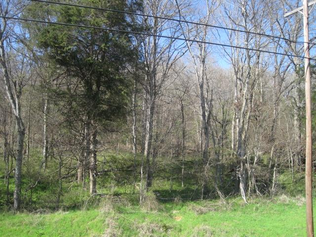 Image of  for Sale near Lebanon, Tennessee, in Wilson County: 12.23 acres