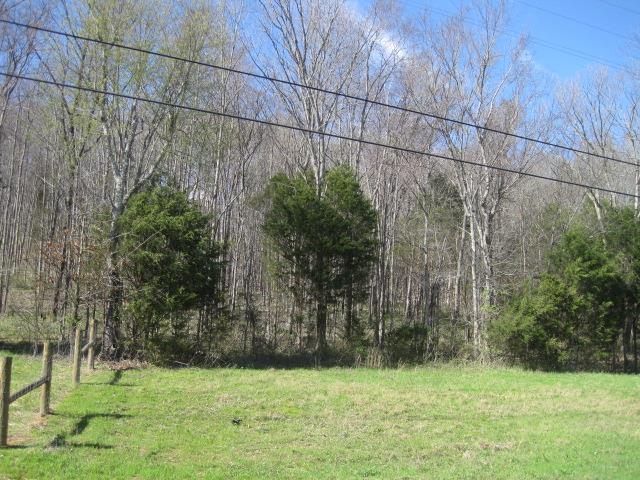 Image of  for Sale near Lebanon, Tennessee, in Wilson County: 9.92 acres