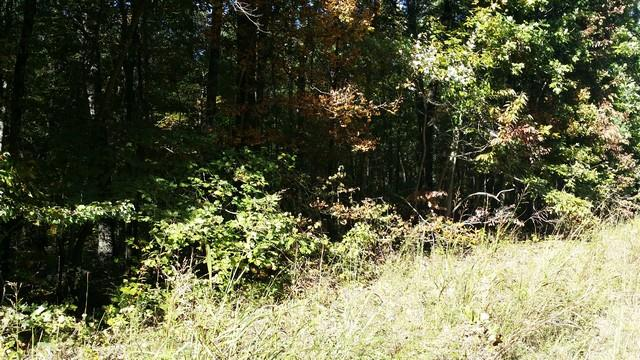 0 Deer Run Rd Lot 146 - photo 15