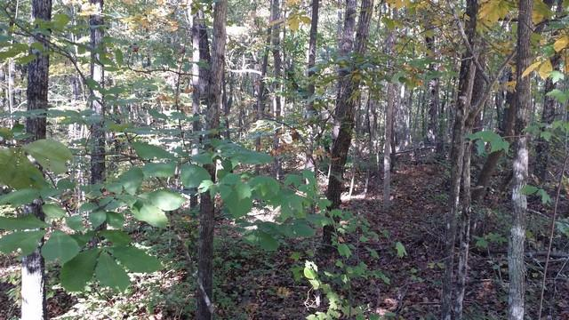 0 Deer Run Rd Lot 146 - thumb 21