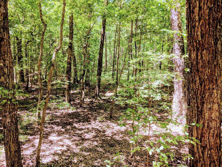 0 Deer Run Rd Lot 146 - photo 5