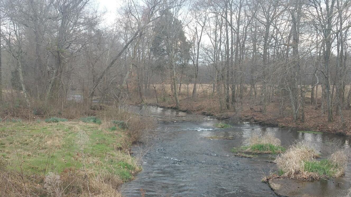 Photo of 7106 Corning Rd  Iron City  TN