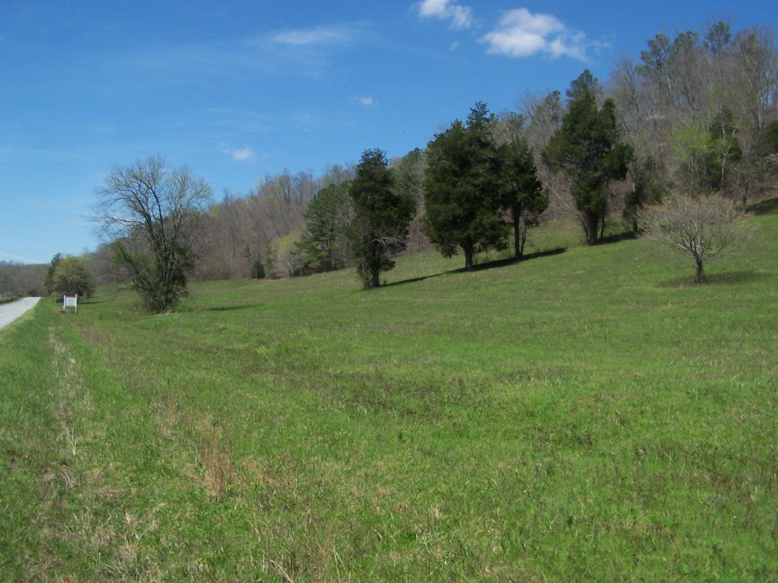 Image of  for Sale near Ethridge, Tennessee, in Giles County: 90 acres