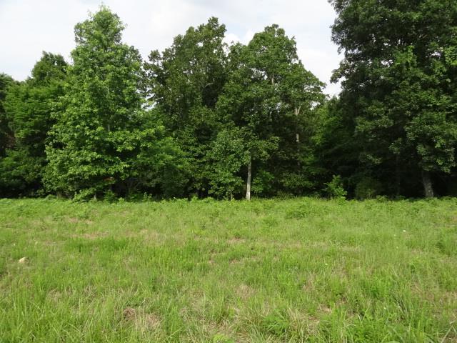 34 BACKWOOD ESTATES Indian Mound, TN 37079