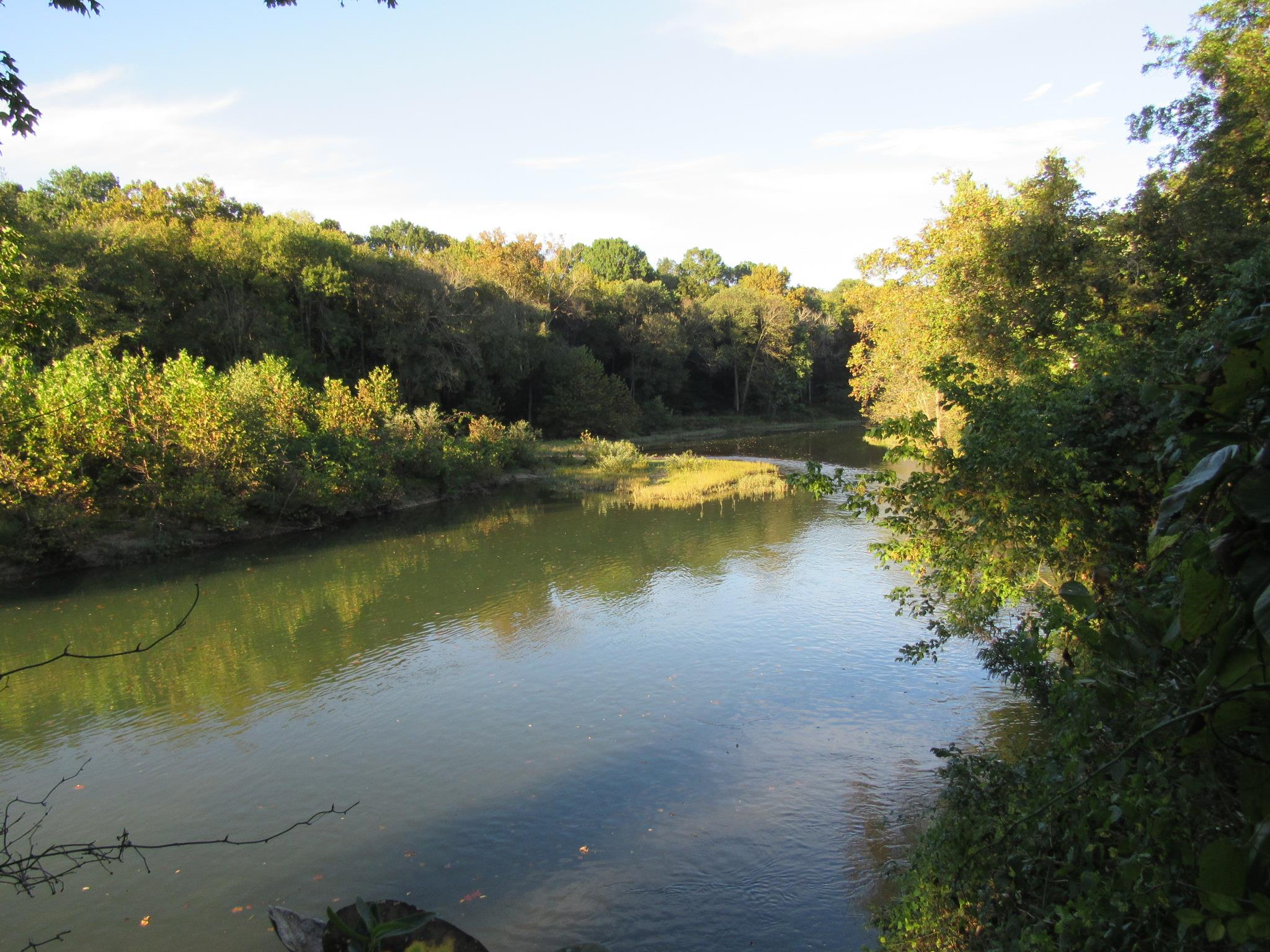 Tennessee waterfront property in pulaski lawrenceburg for Shoal creek