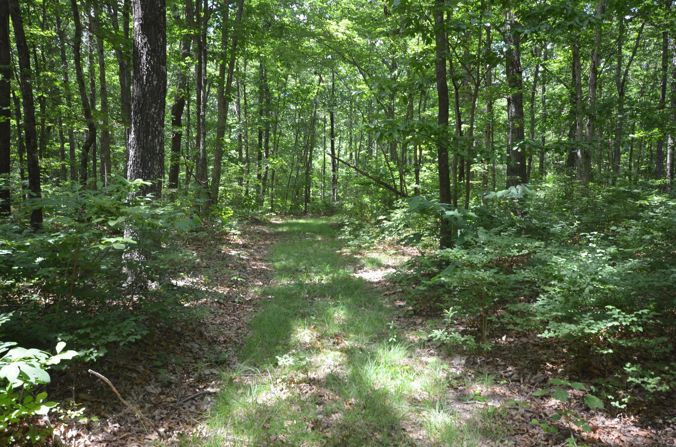 0 Valley View Drive Altamont, TN 37301