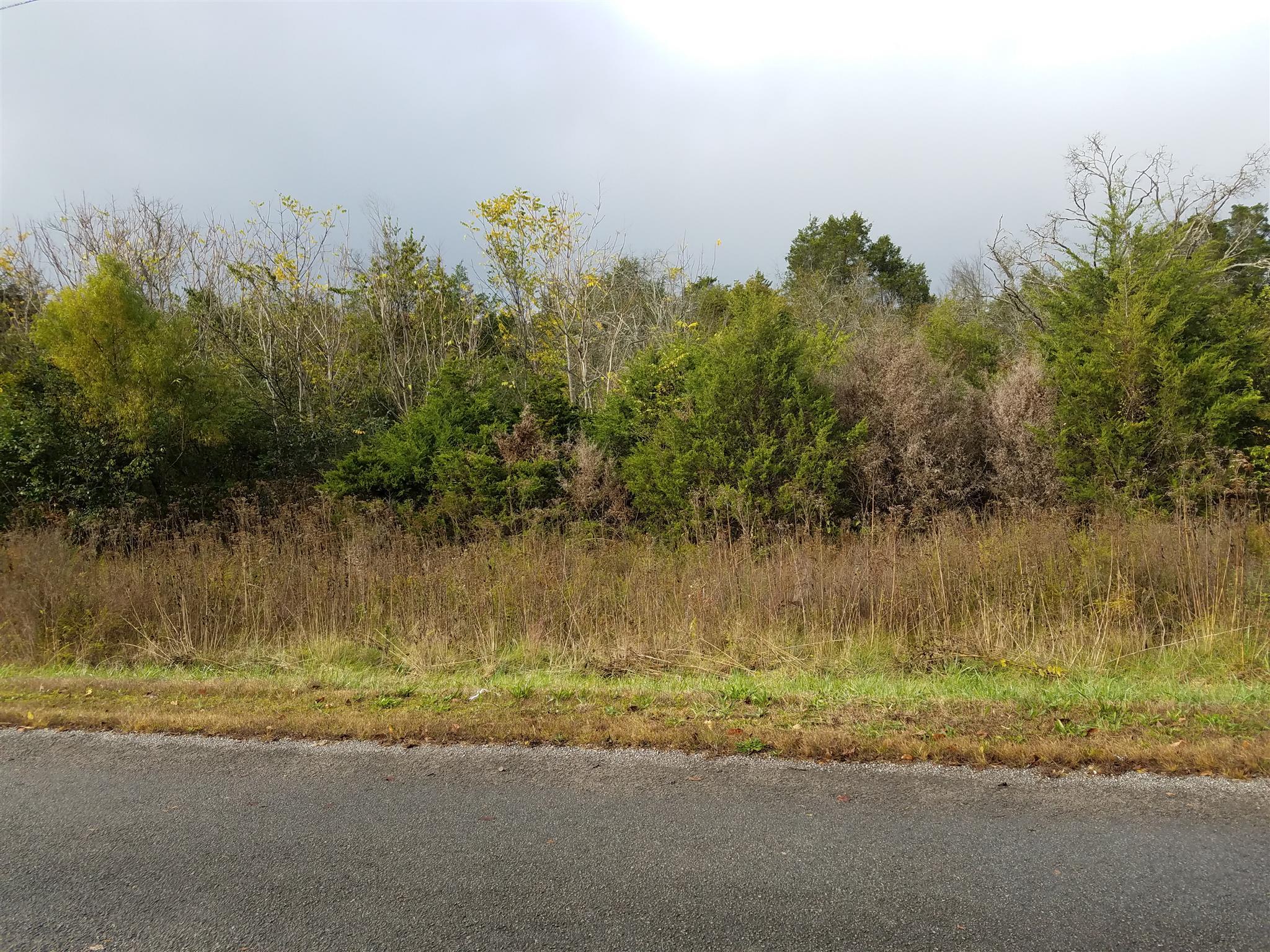 0 Maupin Rd Nolensville, TN 37135
