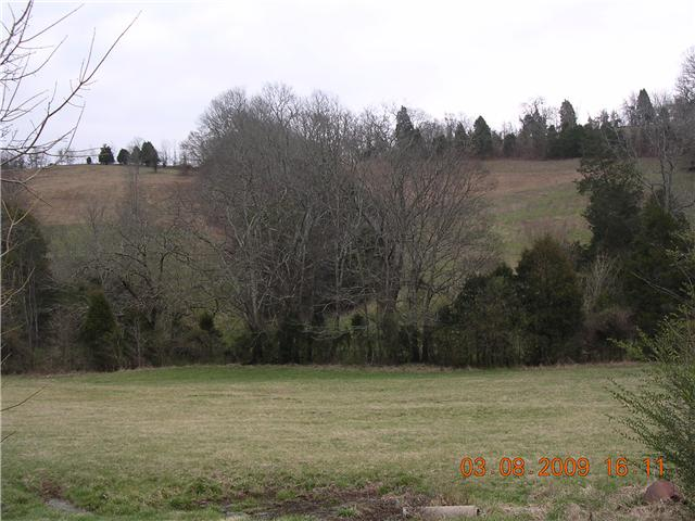 0 Ball Hollow Branch Rd Lynnville, TN 38478