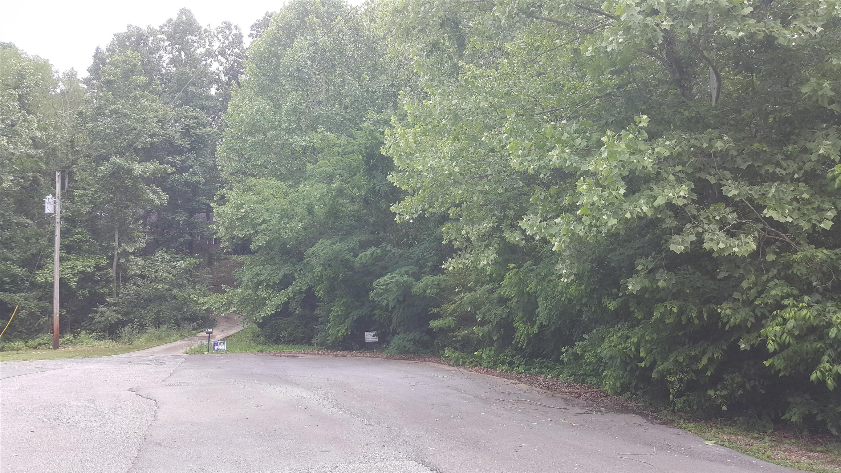 0 Cedarview Dr Lot#13 Charlotte, TN 37036