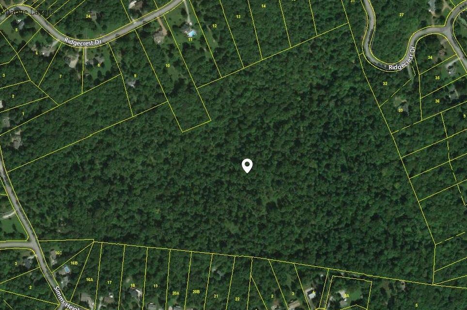 1230 Simms Heights Rd Kingston Springs, TN 37082