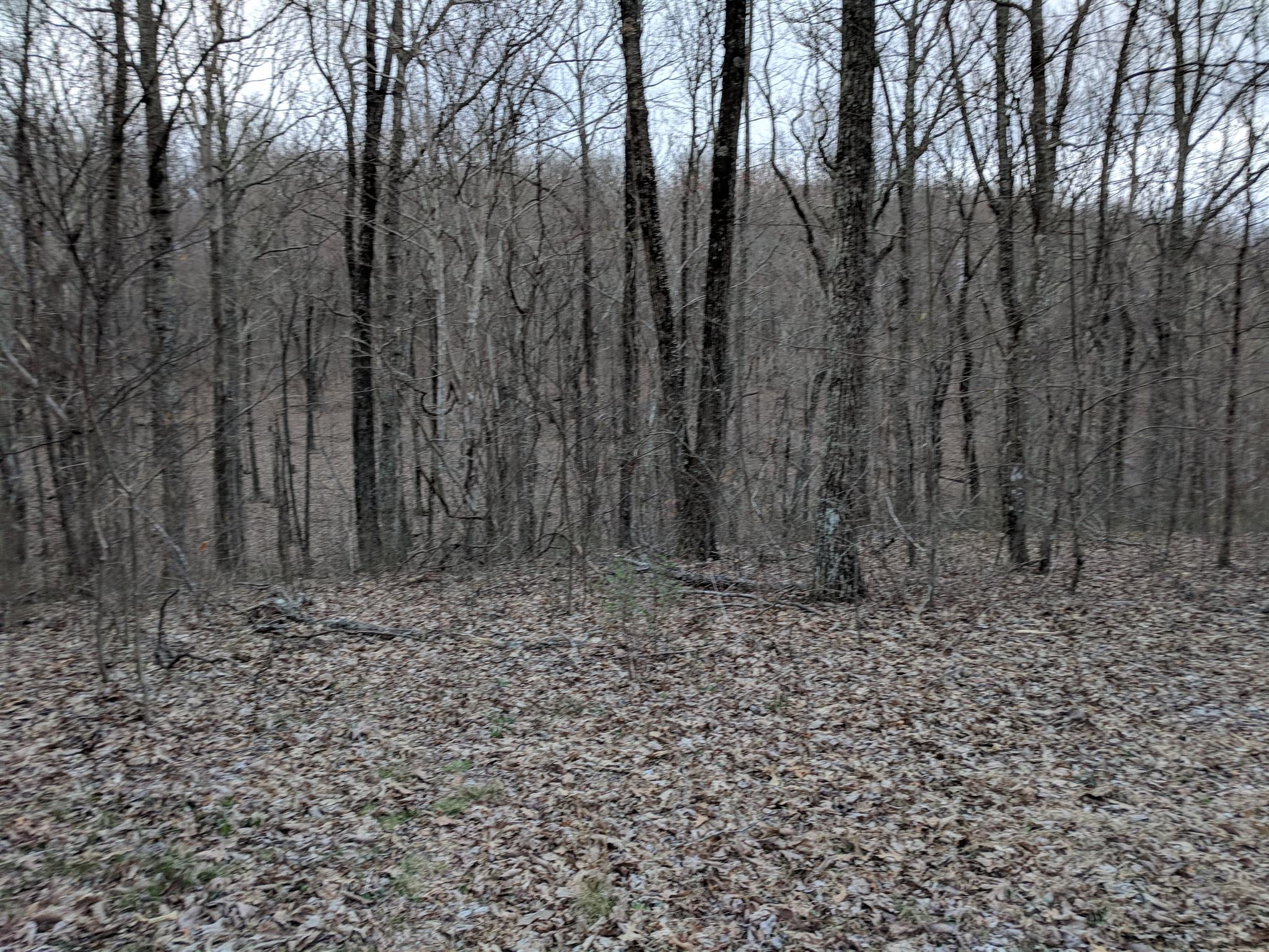 0 Valley View Dr Lot 6 - photo 19
