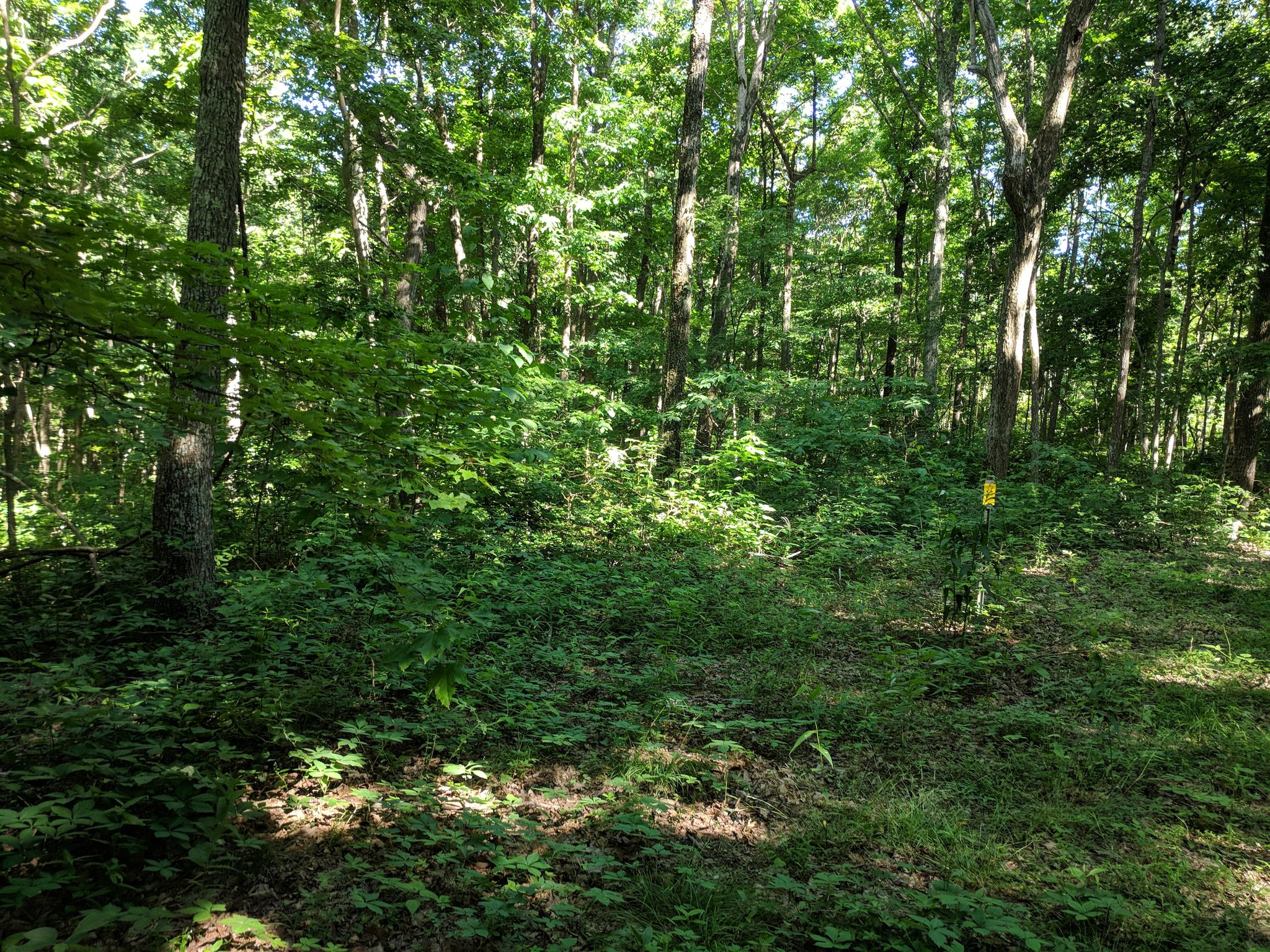 0 Valley View Dr Lot 6 - photo 20