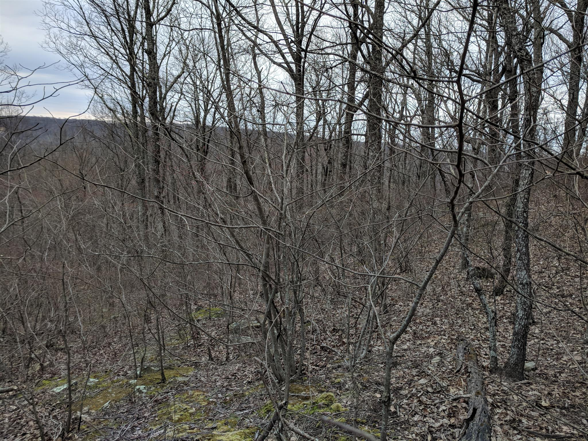 0 Valley View Dr Lot 6 - photo 8