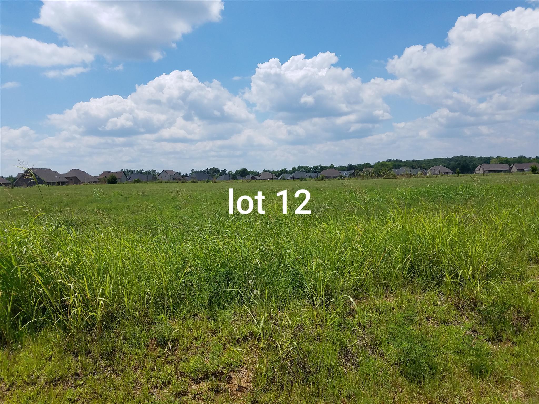 1026 Rhonda Dr Christiana, TN 37037