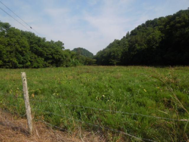 2465 Dry Creek Road Moss, TN 38575