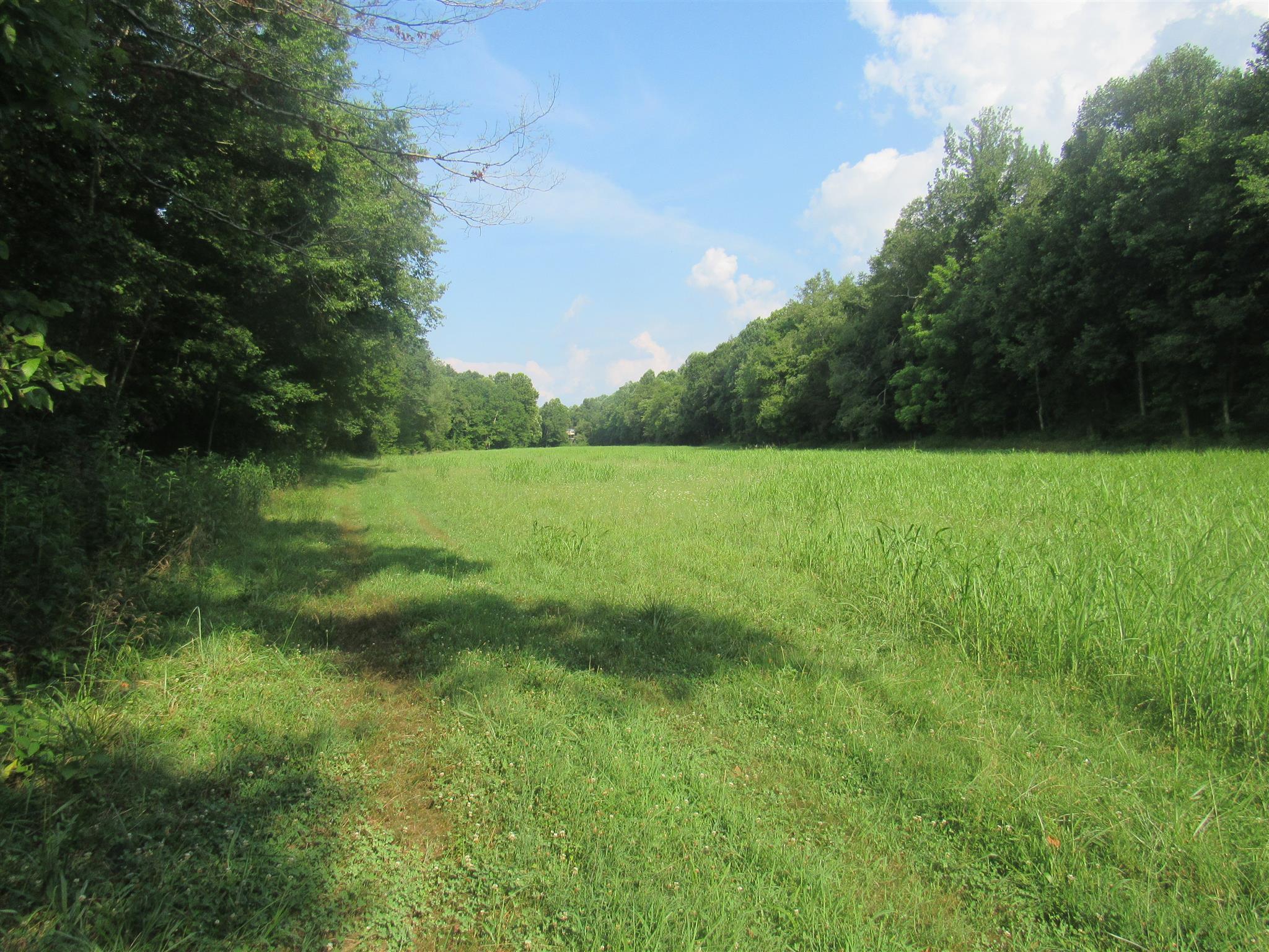 291 Mill Town Rd McEwen, TN 37101