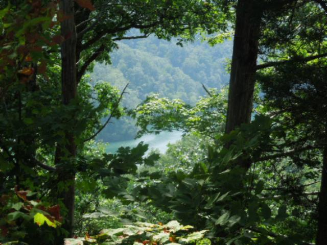 1 .27 Ac. Sunset Pointe Allons, TN 38541