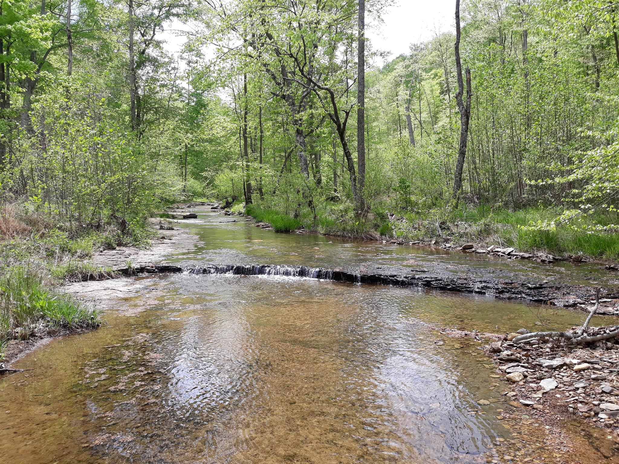 0 Old Sams Creek Rd-Lot 568 Pegram, TN 37143