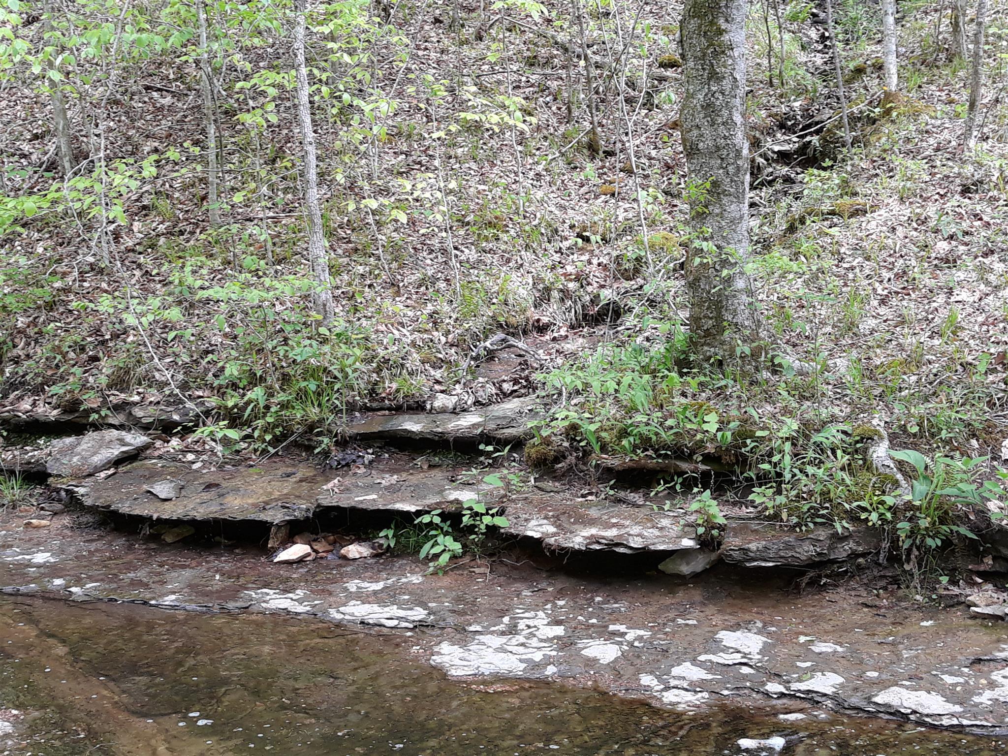 0 Old Sams Creek Rd-Lot 568 - photo 7
