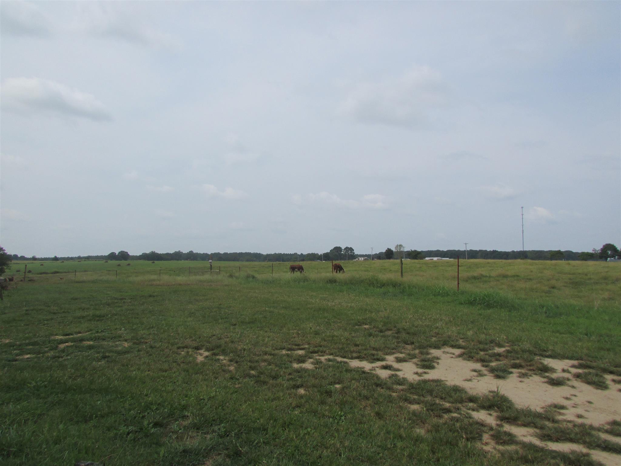 134 Beartown Rd, S Loretto, TN 38469