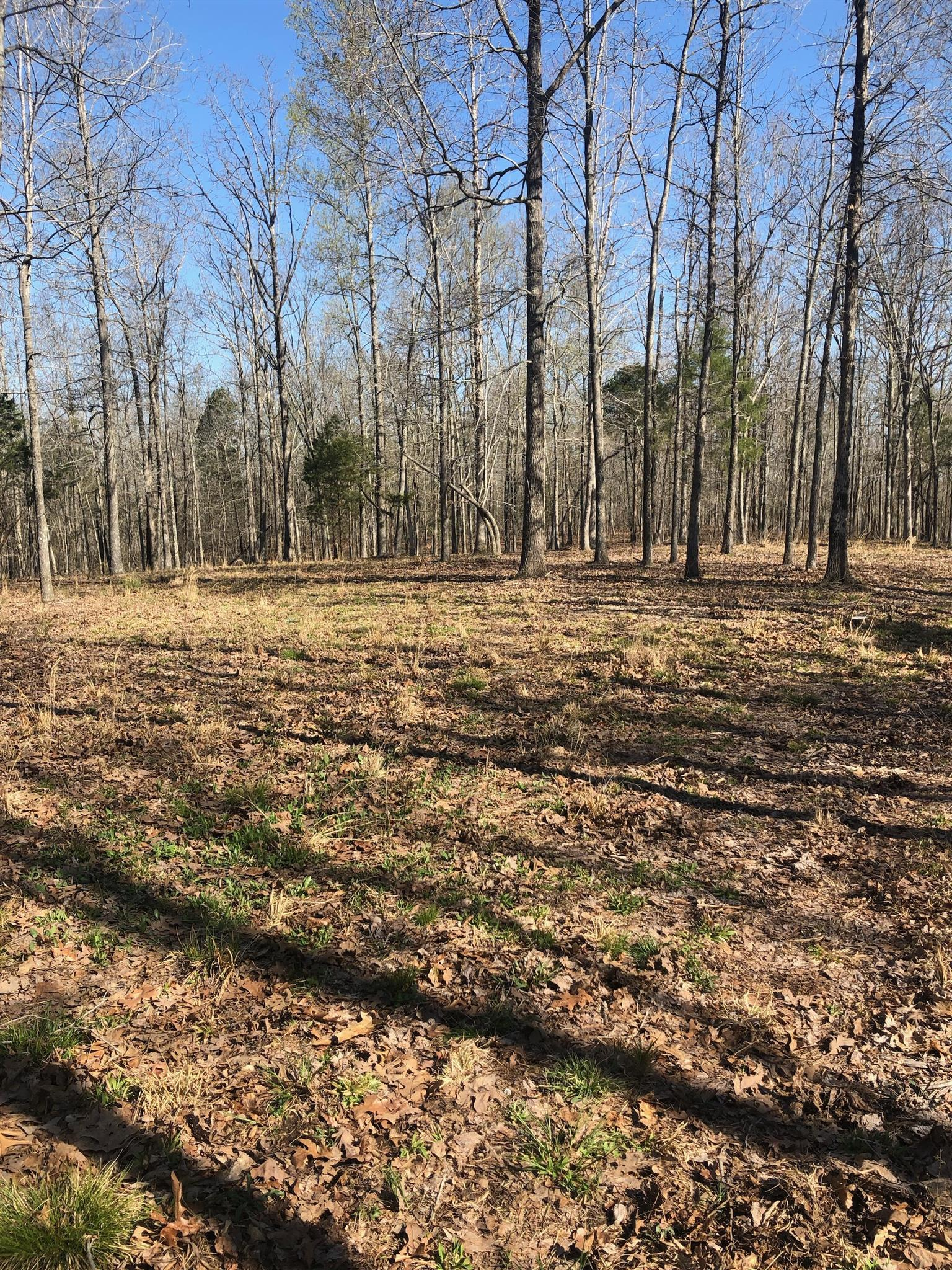 0 Woodland Dr New Johnsonville, TN 37134