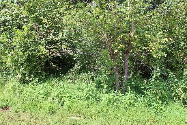 0 Dotsonville Rd Clarksville, TN 37042