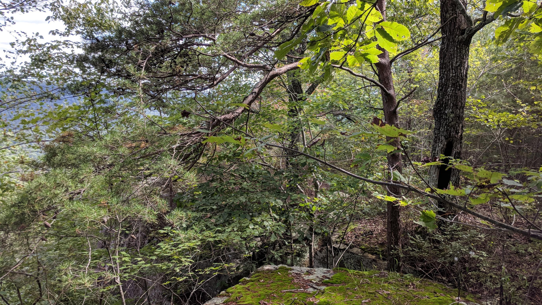 0 Grassy Ridge Rd 5.73 acres - photo 9