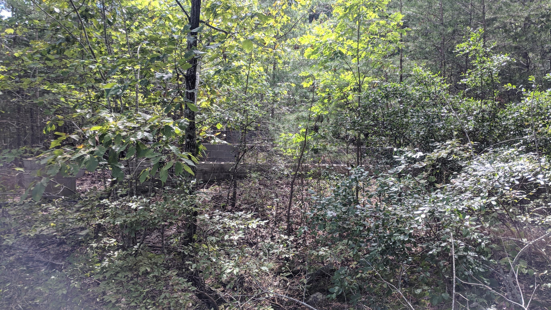 0 Grassy Ridge Rd 5.73 acres - photo 10