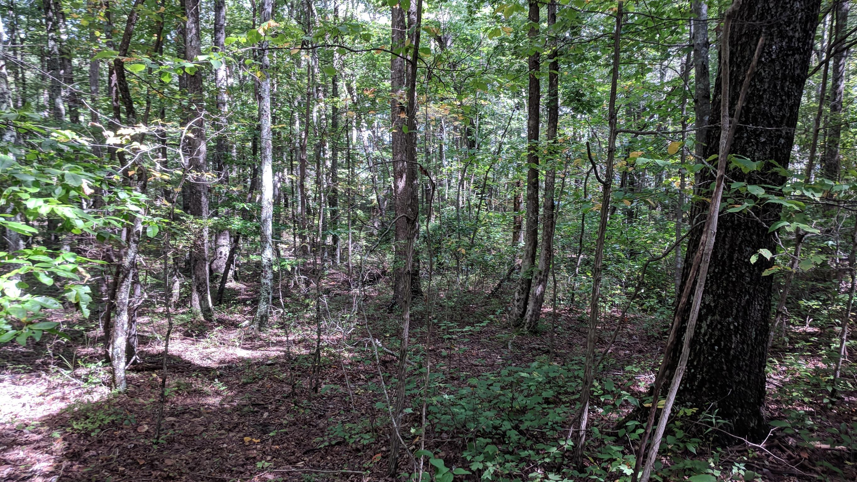 0 Grassy Ridge Rd 5.73 acres - photo 2