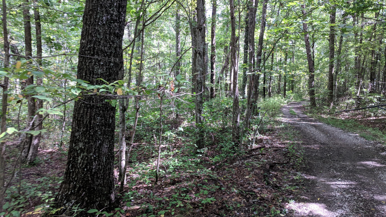 0 Grassy Ridge Rd 5.73 acres - photo 3