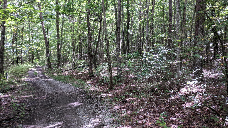 0 Grassy Ridge Rd 5.73 acres - photo 4
