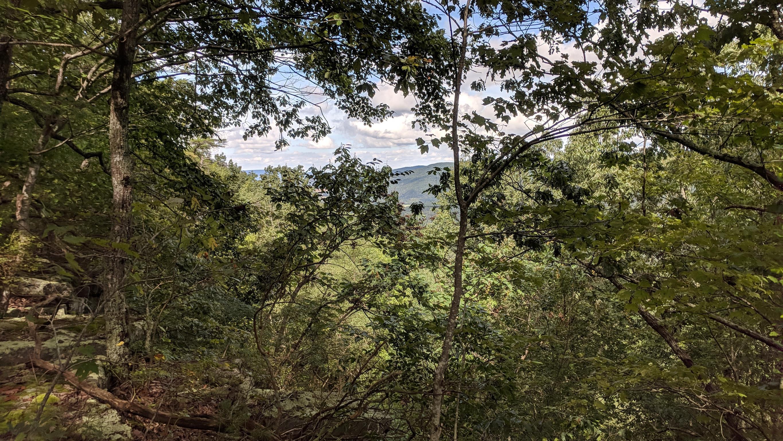 0 Grassy Ridge Rd 5.73 acres - photo 5