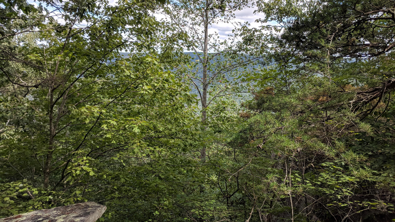 0 Grassy Ridge Rd 5.73 acres - photo 8
