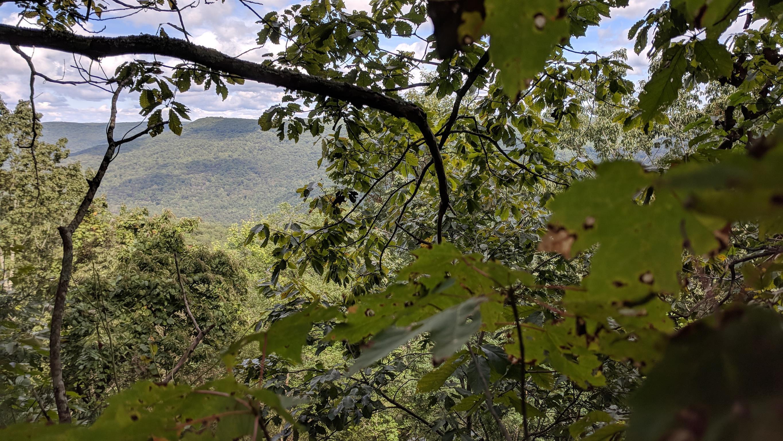 0 Grassy Ridge Rd 2.15 acres - photo 3