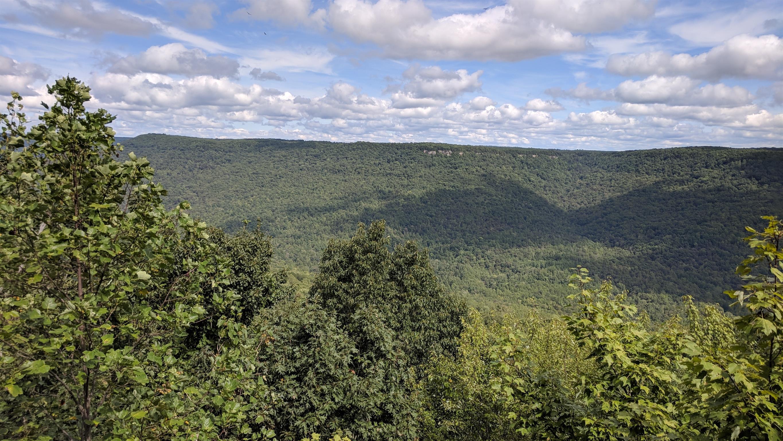 0 Grassy Ridge Rd 2.15 acres - photo 6