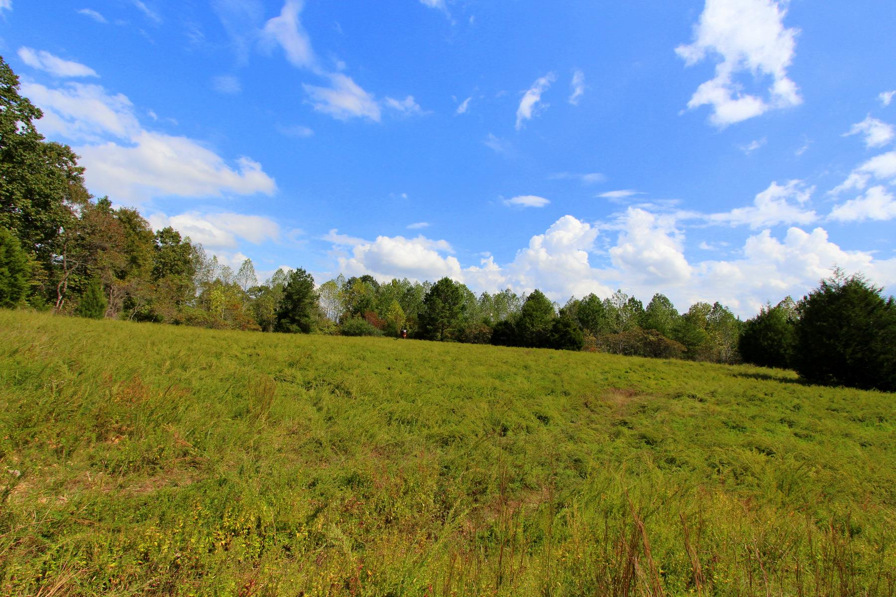 0 S Of Whitson Bend Rd Centerville, TN 37033