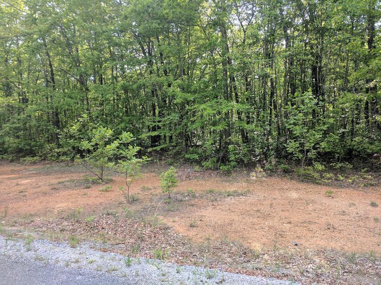 0 Deer Run Rd Lot 242 - photo 1