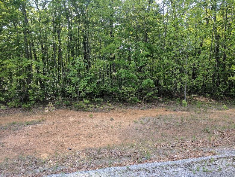 0 Deer Run Rd Lot 242 - photo 2