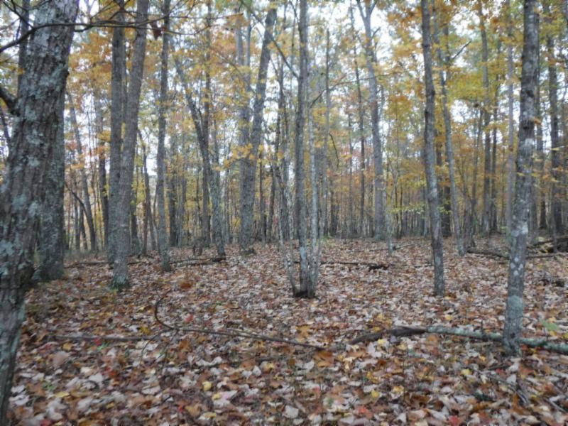 12 .74ac Arrowhead Rd Moss, TN 38575