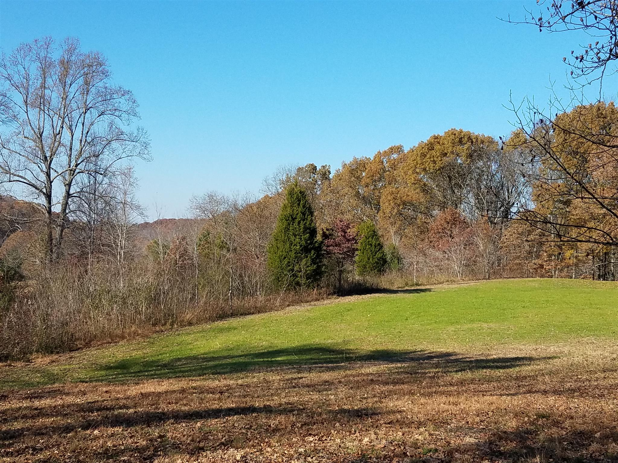 2 LIBERTY RD - Lot #2, Fairview in Williamson County County, TN 37062 Home for Sale