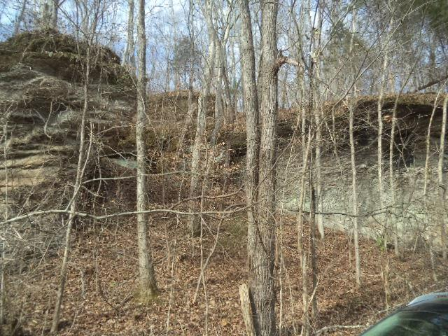 0 Lewis Branch Rd. Tennessee Ridge, TN 37178