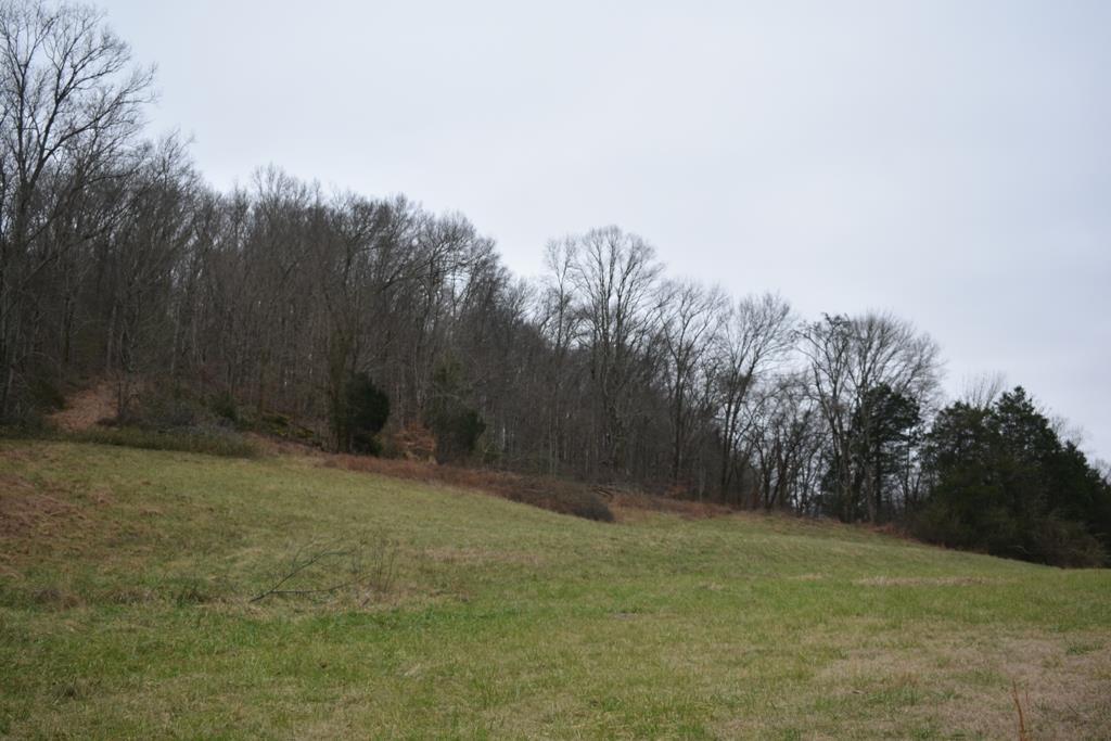 321 Gordonsville Hwy - photo 13