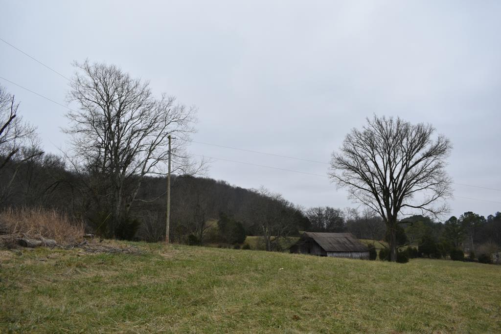 321 Gordonsville Hwy - photo 5