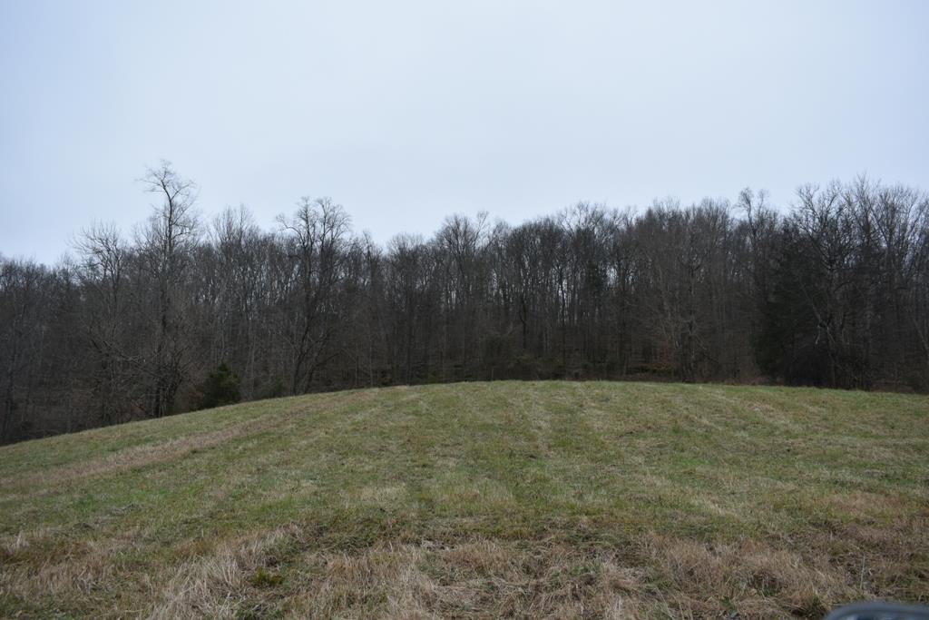 321 Gordonsville Hwy - photo 6