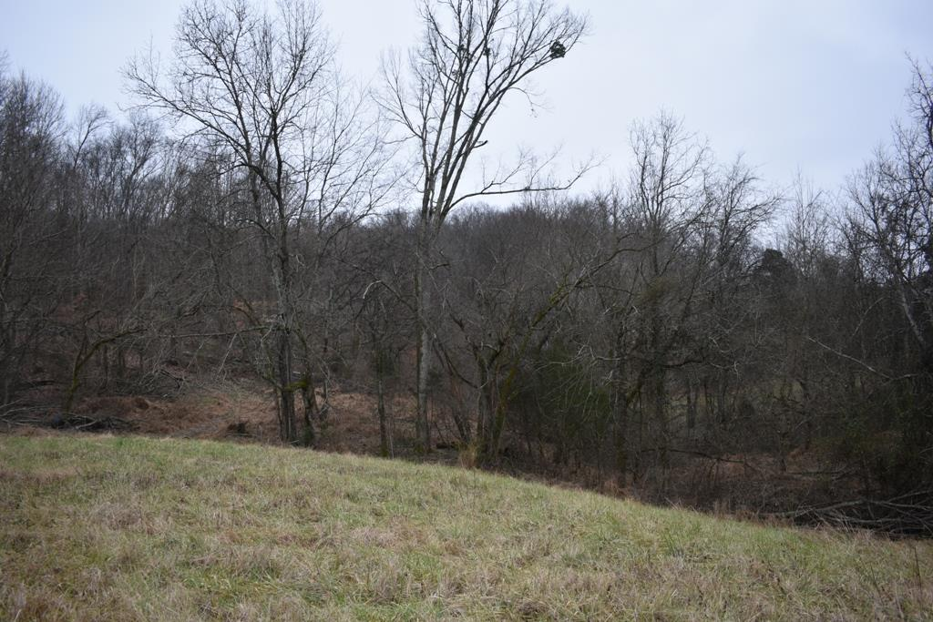 321 Gordonsville Hwy - photo 7