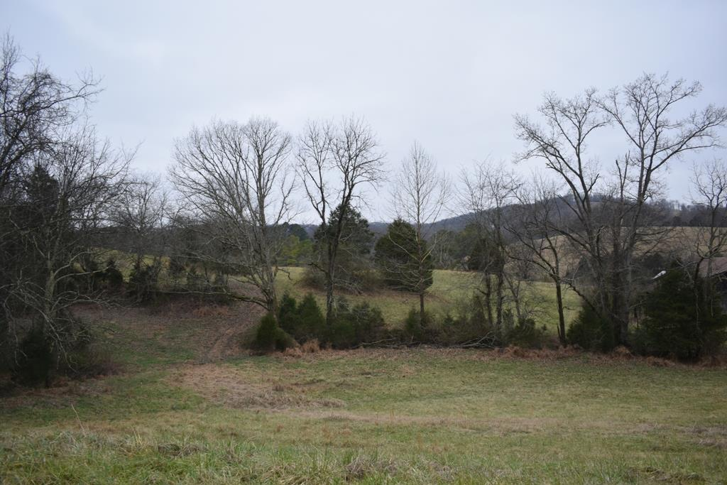 321 Gordonsville Hwy - photo 8