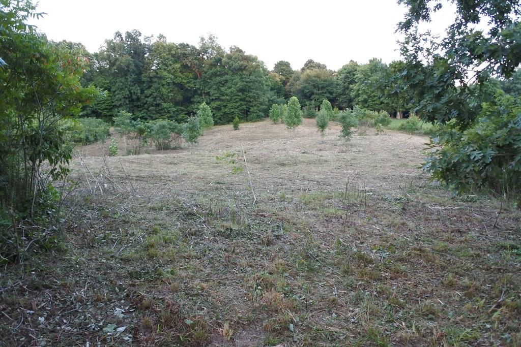 0 Possum Ridge Lane Allons, TN 38541