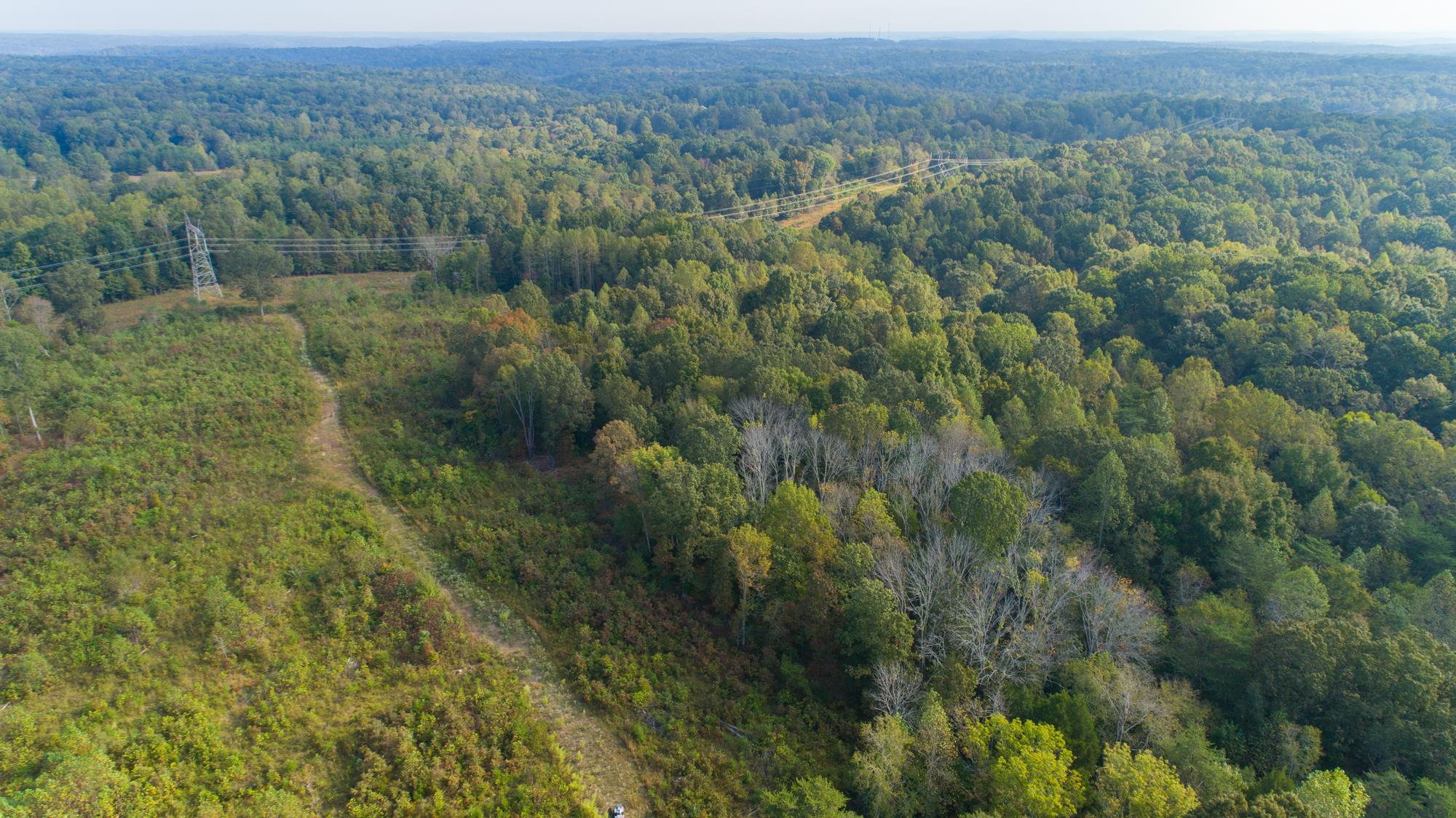 0 Drag Strip Rd, Fairview in Williamson County County, TN 37062 Home for Sale