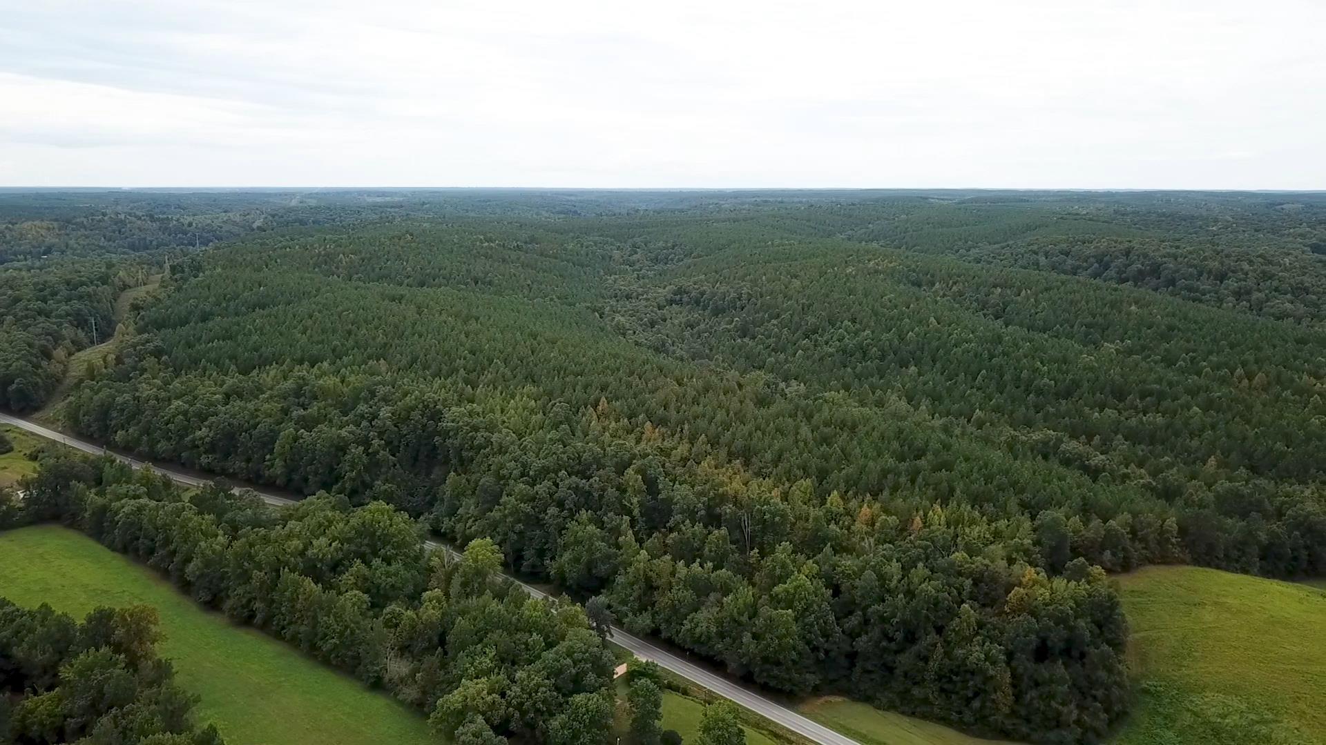 0 Highway 48 S Centerville, TN 37033